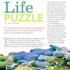 Lifepuzzle_thumb