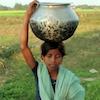 waterindia_thumb
